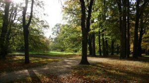 Herbstsonne im Schlosspark